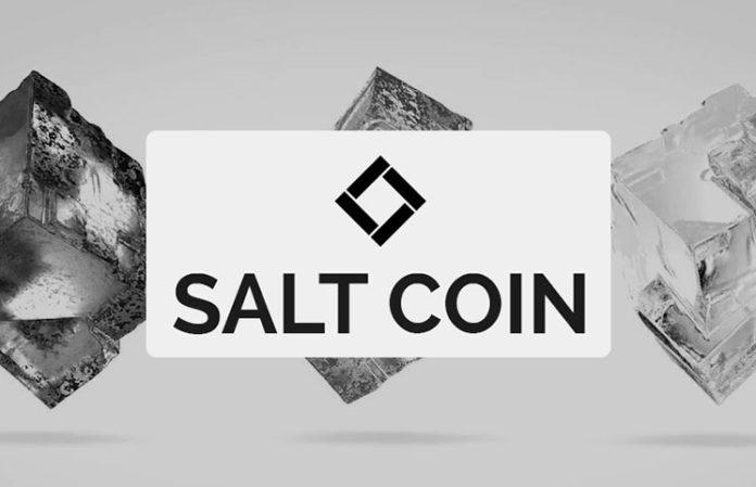 salt-coin-696x449.jpg
